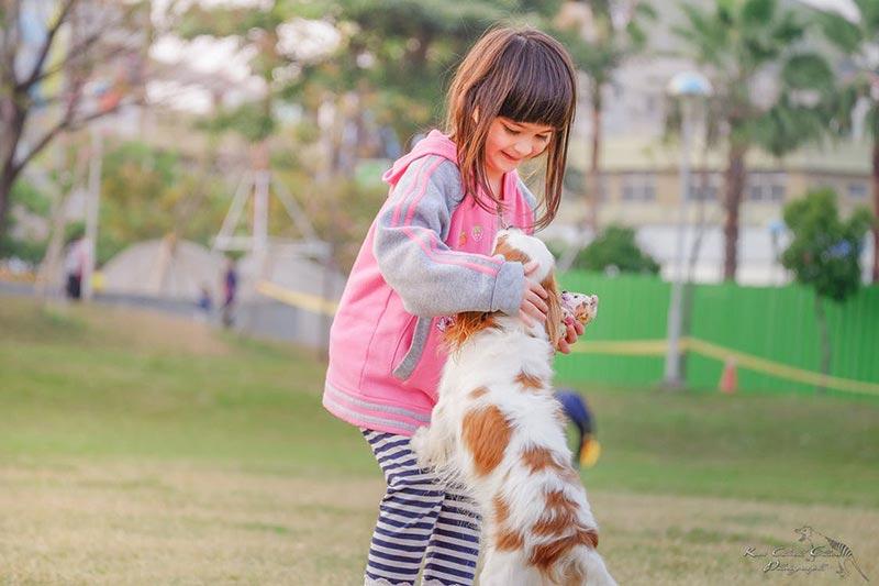 Pies i dzieci w domu